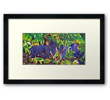Tuscan Vineyard Framed Print