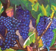 Tuscan Vineyard Sticker