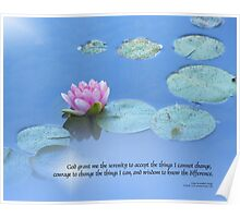 Serenity Prayer Pink Water Lily Poster