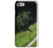 The Path through the French Alps... iPhone Case/Skin