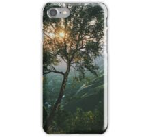 Sun Through Leaves iPhone Case/Skin