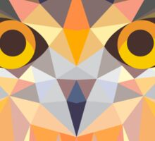 Owl Triangle Sticker