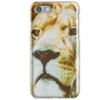 Wild Lion King Feline In Safari Portrait iPhone Case/Skin