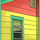 Colorful House by George  Link