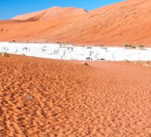 View of Deadvlei in early morning, Namibia Sticker
