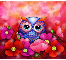 Owl in Poppy Field Photographic Print