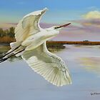 Evening At Campbell's Bayou by Phyllis Beiser