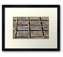 wooden walkway Framed Print