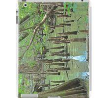 """Cypress knee's"" iPad Case/Skin"