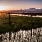 Centennial Marsh at Sunset by Kathleen  Bowman