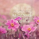 Only as High as I reach I will grow by Nicola  Pearson