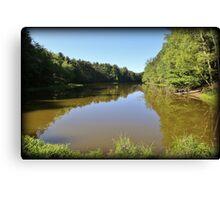 Pickerel Pond Summer Morning Canvas Print