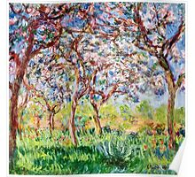Claude Monet - Printemps A Giverny 1903  Poster