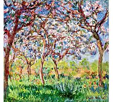 Claude Monet - Printemps A Giverny 1903  Photographic Print
