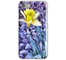 Painted Flower iPhone Case/Skin