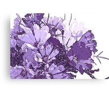 Summer Cosmos In Purple  Canvas Print
