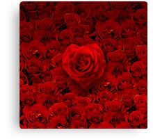Rosey Love Canvas Print