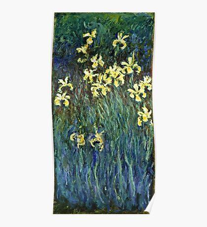 Claude Monet - Yellow Irises ( 1914 -  1917)  Poster