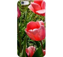 Time 4 Tulips iPhone Case/Skin