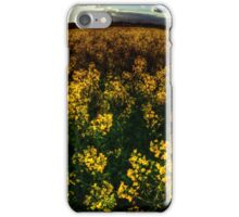 Essex Rapeseed Field iPhone Case/Skin