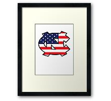 Go Heels, Go America Framed Print