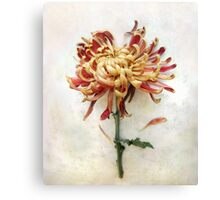 Portrait of a Mum in Red and Gold Canvas Print