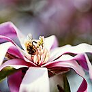 One Busy Bee  by Evita