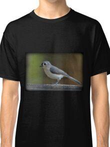 Titmouse Terrace Classic T-Shirt