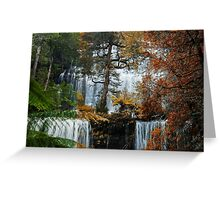 Russel Falls in Mount Field National Park. Greeting Card