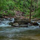 Glady creek by Jason Vickers