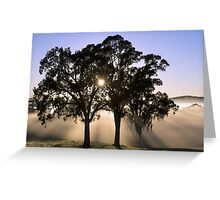 ~ Sunburst ~ Greeting Card