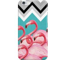 flamingo  iPhone Case/Skin