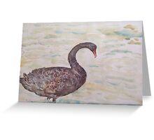 Black Swan at lake by Liz H Lovell Greeting Card