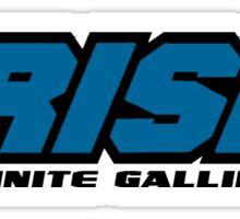 Crisis of Infinite Gallifreys Sticker