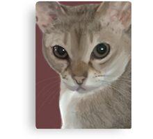 Singapura cat portrait Canvas Print