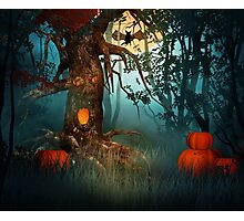 Scary Forest Halloween Photographic Print