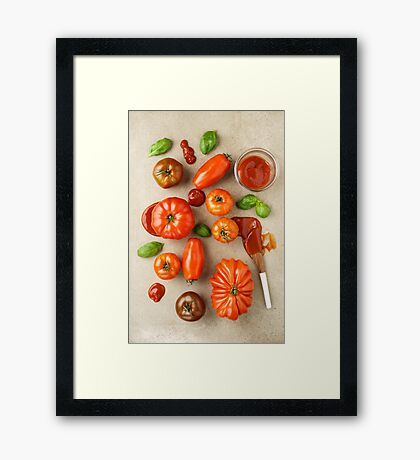 Tomatoes for tomato ketchup Framed Print