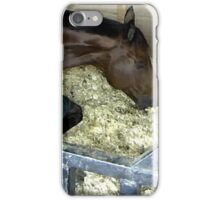 Horse Show Taking A Nap   iPhone Case/Skin