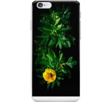 Nutrition [Flipped] [Recommended: iPod Touch ONLY] iPhone Case/Skin