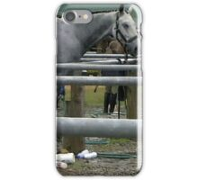 Horse Show Wash Stall   iPhone Case/Skin