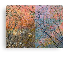 Pacify Canvas Print