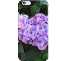 Beautiful Hydrangeas iPhone Case/Skin