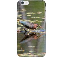 Green Heron Reflections iPhone Case/Skin
