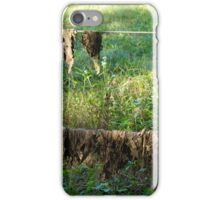 Flood Left Overs iPhone Case/Skin