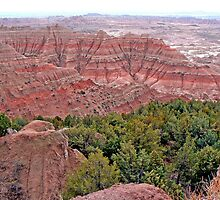 Green in the Badlands by Graeme  Hyde