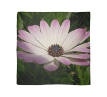 Side View of A Pink and White Osteospermum Scarf