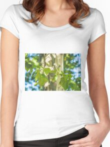 049 - Trees Women's Fitted Scoop T-Shirt