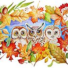 Autumn owls by Redilion