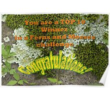 Banner Ferns And Mosses TOP 10 Poster
