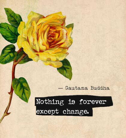 Buddha quote Nothing is forever except change Sticker